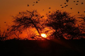 sun_set_Namutoni